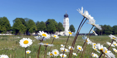 Natur in Höhenkirchen-Siegertsbrunn