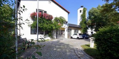 Rathaus Sommer