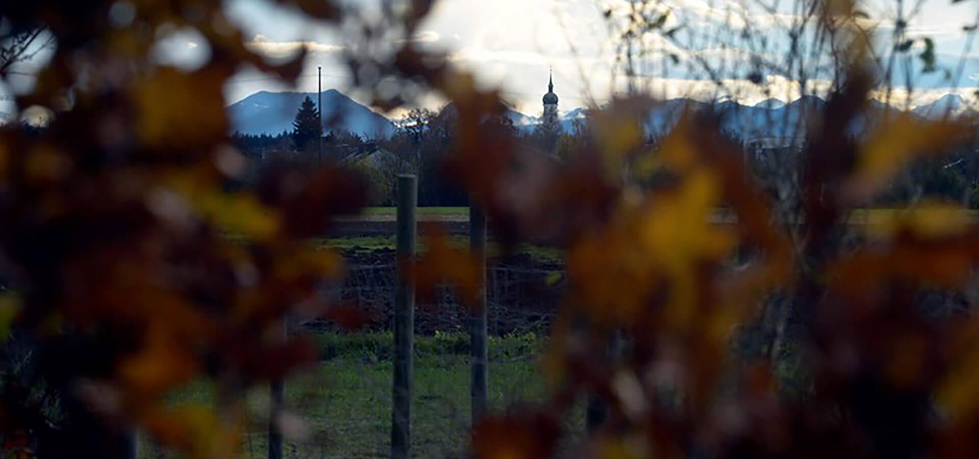 Höhenkirchen-Siegertsbrunn im Herbst
